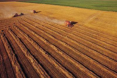 """耕地保护将强化数量质量生态""""三位一体"""""""